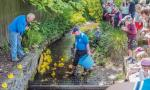 Penicuik in the Park 26th May 2018 - A close finish to the first Duck Race