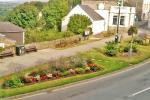 Gardening in Fishguard - General view of the garden