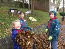 Planting Crocus Corms on World Polio Day -