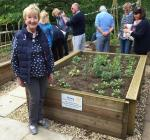 Stroud Court Woodland Walk - Raised beds design and built by Rotary