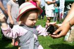 St Asaph country Fayre 2013 - child-hamster