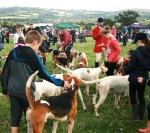 Thousands brave the elements for the Rotary St Asaph Country Fayre - fayre019