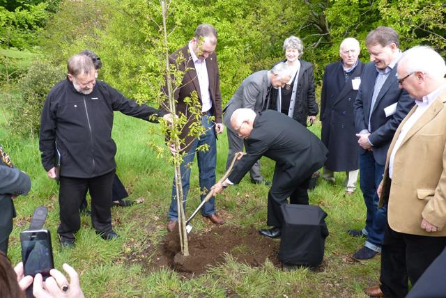 Peace Forest Ireland - President Sakuji Tanaka planting an oak tree.