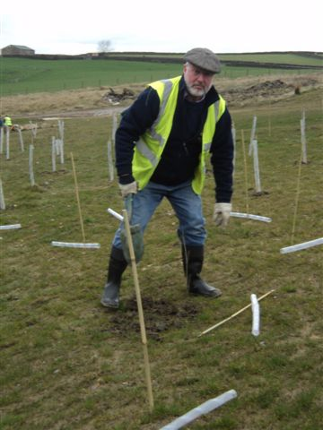 Tree Planting at Sugden End - tree planting action