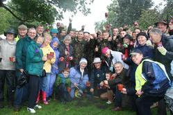 Crocus planting group