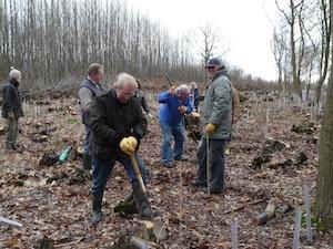 Sittingbourne Invicta's Tree Planting