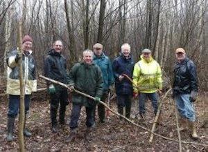 Coppicing Work for Kent Wildlife Trust
